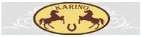 Pensjonat Karino